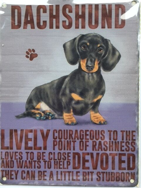 Dachshund Sausage Dog metal sign plaque Wall Decor Garden Bar Home Breed Daxie