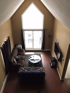 Penthouse Condo, Whyte Ave Area, With Private Roof Top Patio