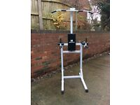 Hardcastle VLR Power Tower Pull Up And Dip Station