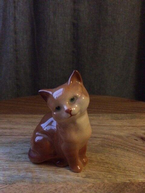 Berwick ginger cat