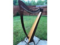 Salvi Aida Mahogany 34 strings Lever Harp