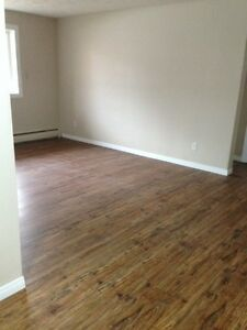 1 Bdrm. Apt.  - Adult only - Don't pay rent until the New Year! Edmonton Edmonton Area image 4
