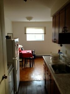 Large All inclusive Downtown 1 bed with Balcony avail Nov 1st Kingston Kingston Area image 2