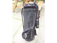 GOLF BAG- CALLAWAY GOLF CLUB STAND BAG- GREAT CONDITION- PRO GOLF BAG