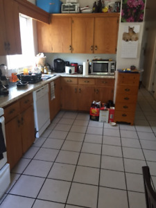 Pet Friendly  5 Bedroom Apartment for September 1st