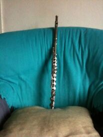 PLAY THE FLUTE! Introductory Lessons