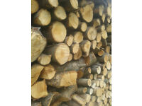 BULK FIREWOOD seasoned wood logs for wood burners and open fires.