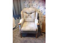 Cintique Arm Chair/Easy Chair