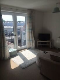 Double room in newly decorated Kingswood flat - shorterm lets available