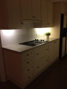 Entire Kitchen for Sale!