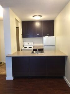 Great Downtown location! 1 bedroom apartment- awesome value!