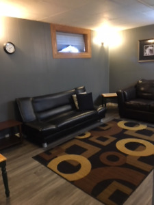 Fully Furnished Newly Renovated Basement Suite