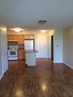 2 Bedroom, Luxury Condo Suite for rent in Mississauga