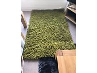 Large BHS RUG - Green.