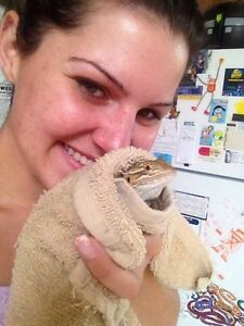 Reptile Love Needs Your Help...