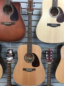 Norman B20 Presys Acoustic/Electric Guitar