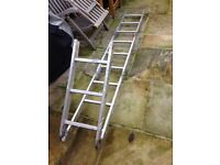 FREE LADDER extendable