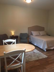 Furnished bachelor suite