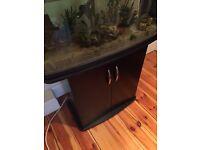 110L Fish Tank + Stand + Fish + Accessories