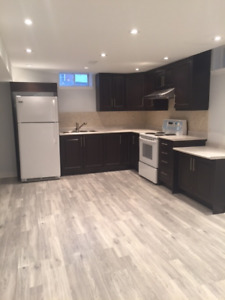 Newly Renovated Studio Apartment w/Separate Entrance