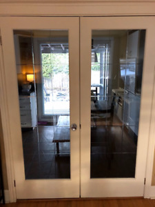 Glass French Doors (2)
