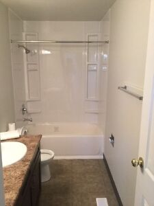 Large newly renovated full house with basement for rent