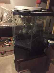 Corner aquarium kijiji free classifieds in alberta for 55 gallon corner fish tank
