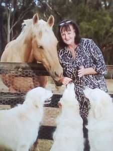 House and Pet Sitter Maiden Gully Bendigo City Preview