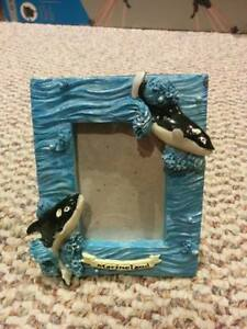 Great Condition Marineland Picture Frame.