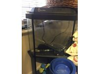 corner fish tank for sale with stand and pump ect