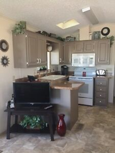 Gorgeous Park Model in Mesa Adult Community (Viewpoint)