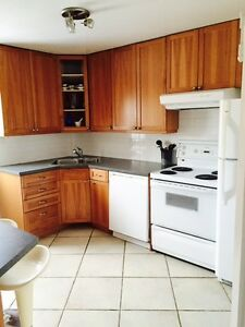 Lovely Roncesvalles Apartment (Unfurnished)