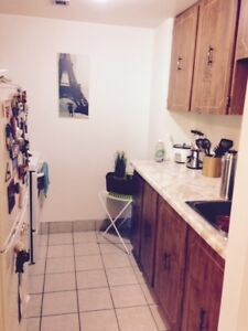 BACHELOR APARTMENT - SOUTH END = AVAILABLE 01 JANUARY