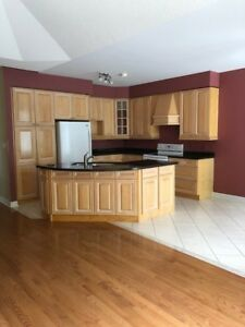 Quality Kitchen , with Custom Counter Tops and under mount Sink