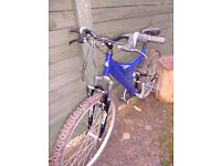 Muntis Mountain Bike in Blue 24 inch wheels