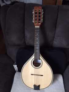 For sale mandolin