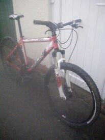 "Saracen tufftrax hardtail adult 19"" bike"