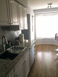 Renovated home, newly furnished room for rent, close to UW/WLU Kitchener / Waterloo Kitchener Area image 10