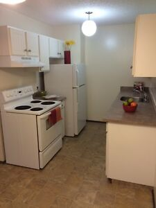 Spacious 2 Bedroom Apartment With Balcony! Pets Welcome!