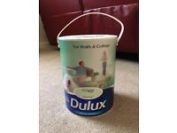 Dulux 5L Willow Tree Paint