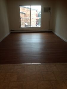 2 Bedroom Renovated Apartment