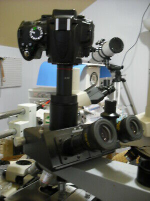 Nikon Camera 2 Nikon Microscope Adapter 0.5x 1.0x Lens Wild Leitz Leica Iso38