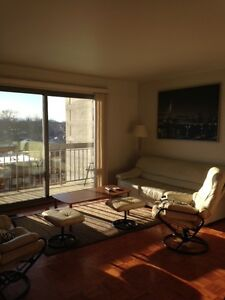Osborne Village furnished one bedroom available for most of June