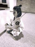 Kids Karate Program! Reg. Now!