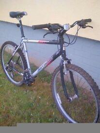 "Quick sale ADult Large barracuda 21"" lightweight bike"