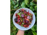 Nutritionist and Private Chef, vegetarian, vegan, health food and naturopathic nutritionist