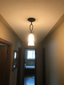 Four (4) New Pendant Lights