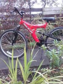 Bike.ready to ride