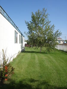 Own Millet 1/2 acre. Total renovate/build-your-own/move on RTM Strathcona County Edmonton Area image 8