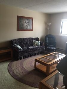 ACROSS FROM LU - furnished 2bdrm apartment